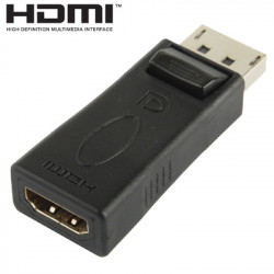 HDMI til DisplayPort Adapter/Converter