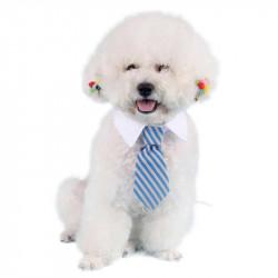 Nuttet slips til små hunde