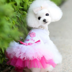 Hund prinsesse kjole