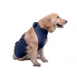 Dog walking aids harness